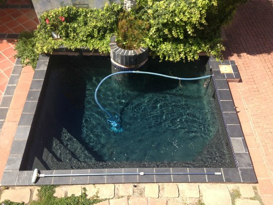 On The Vermont Guest House: The pool from upstairs
