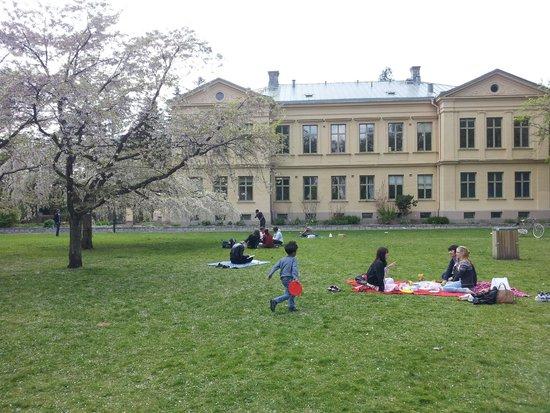 Botanical Gardens (Botaniska Tradgarden): garden