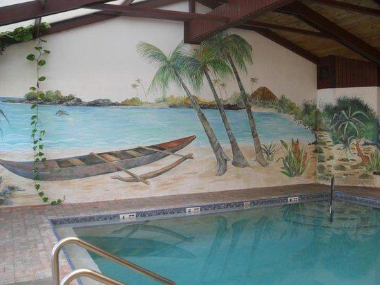 Hawaiian Inn Indoor Pool