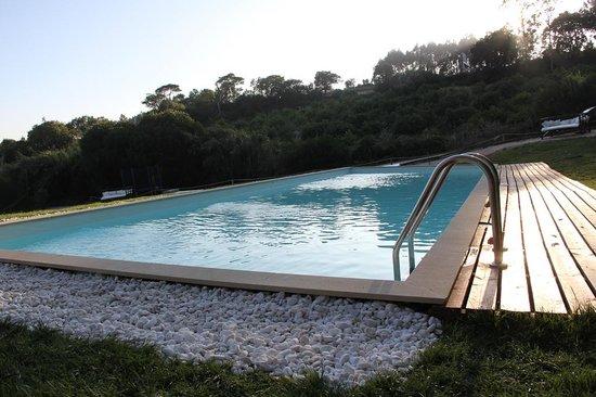 Coca da baleia piscina foto de parque aventura cova da for Piscina de coca