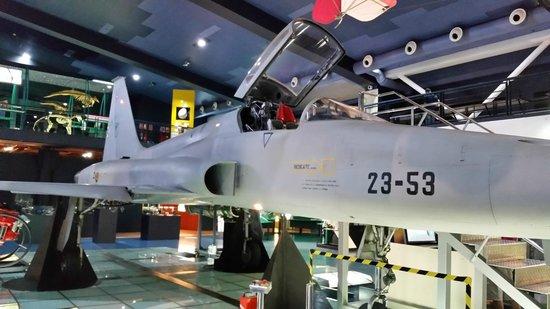 Museo Elder de la Ciencia y la Tecnología: lateral avion