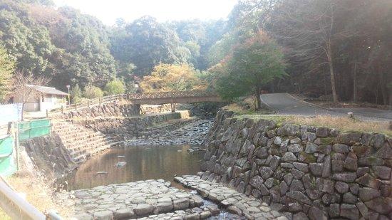 Mikumarikyo Forest Park