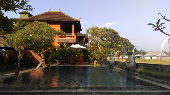 Mandala Desa: Pool view