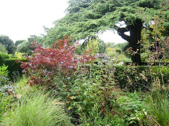 Hidcote Manor Garden - строгие линии и буйство цветов