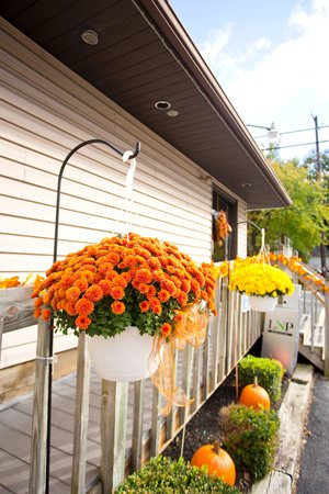 Silver Spring Family Restaurant: Beauty of fall