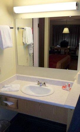 Econo Lodge: Clean bathroom