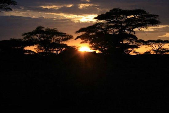 Ndutu Safari Lodge: Tramonto