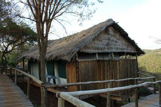 Ngorongoro Forest Tented Lodge: Una camera