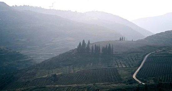 West Bank, ดินแดนปาเลสไตน์: Shiloh Valley