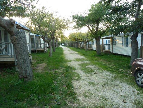 Camping International: les allées de mobiles homes