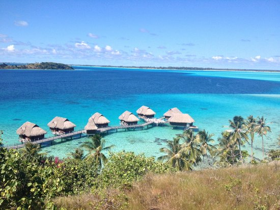 Sofitel bora bora marara beach resort updated 2018 for What to buy in bora bora