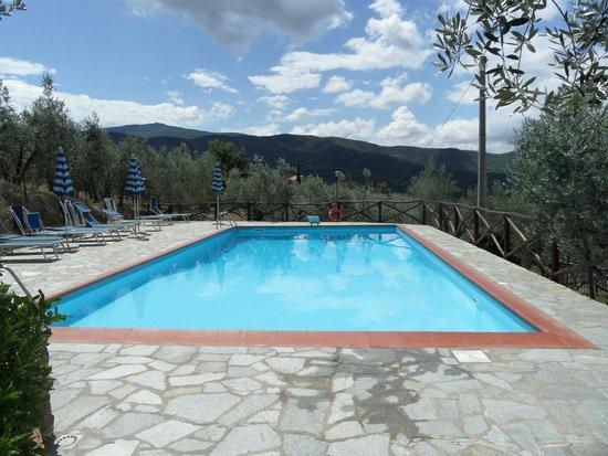 Castiglion Fiorentino, İtalya: The pool area