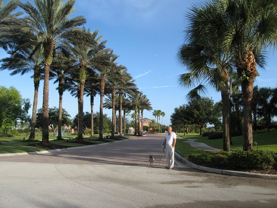 La Quinta Inn & Suites Fort Myers Airport : walking with my dog outside the hotel