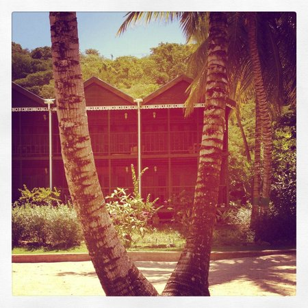 Charlestown, Canouan: Our Villa between the palm