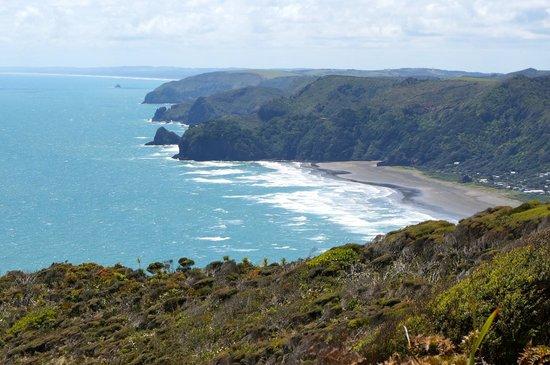 Te Huia Tours: Piha Beach