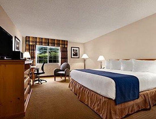 Ramada at Spokane Airport: 1 King Bed Room