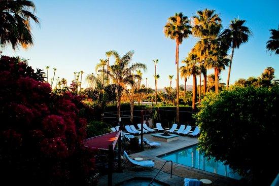 Desert Paradise Gay Men's Resort 사진