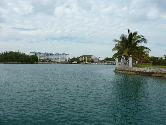 Port Lucaya Marina: lovely scene