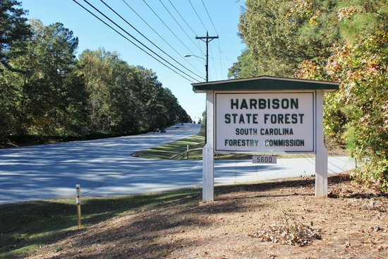 ‪Harbison State Forest‬