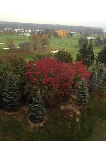 Ann Arbor Marriott Ypsilanti at Eagle Crest: View from hotel room