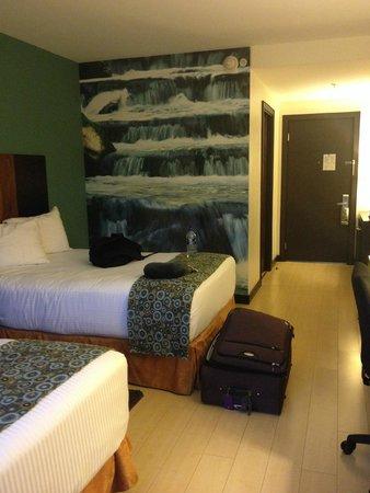Hotel Holiday Inn Express San Jose Forum Costa Rica: Todos os quartos possuem imagens na parede