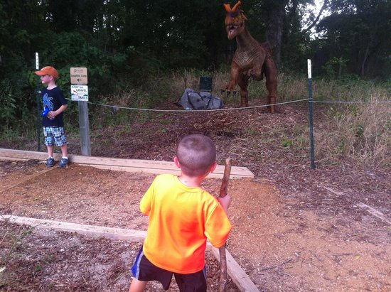 Heard Natural Science Museum & Wildlife Sanctuary : The spitting dinosaur is hilarious