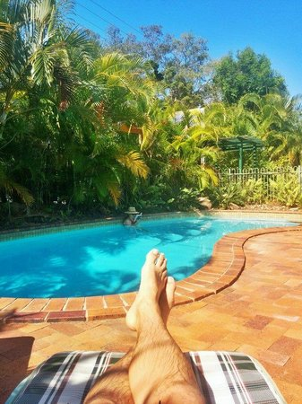 Bayshores Holiday Apartments: The view from my lounge chair!