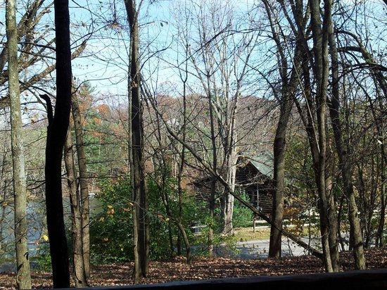 Coblentz Country Cabins: View from Fox Den