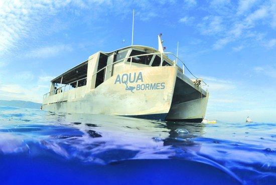 Aquabormes