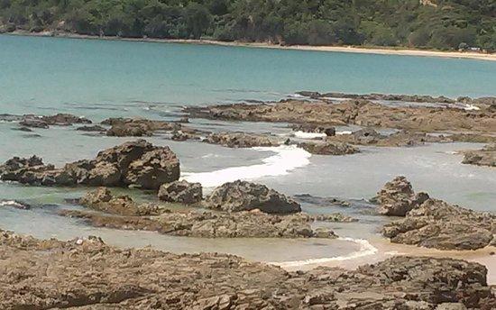 Pipi Dune B&B: Praia em direção a Coromandel