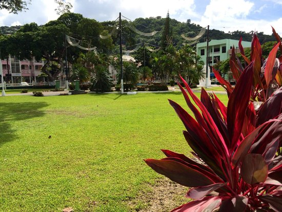 Derek Walcott Square: Fresh and Green