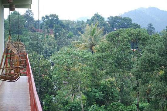 Panthalams Homestay: Scenic view from the Room