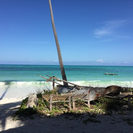Paradise Beach Bungalows: レストランからの眺め