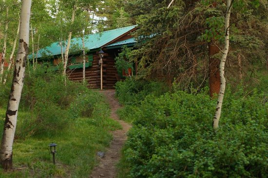 Elk Mountain Ranch: Your cabin in the woods