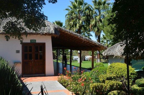 Palapa para eventos picture of garden express saltillo for Gardening express reviews