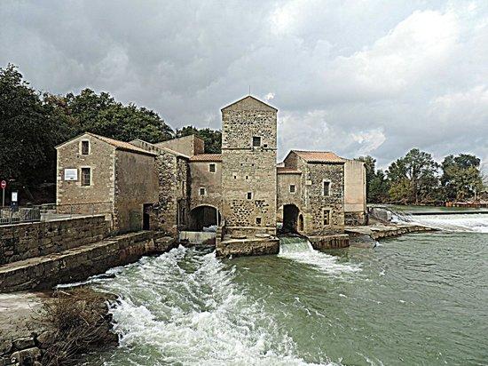 Saint-Thibery, Francja: Le moulin à Bled (blé)