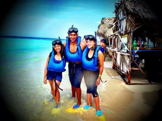 Paradise Island & The Mangroves (Cayo Arena): The family