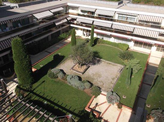Les Strelitzias: vue de la chambre sur Patio