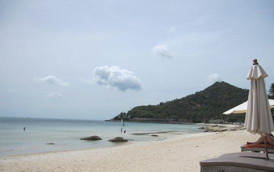 New Star Beach Resort : Пляж