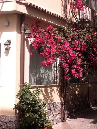 Hotel Sylesia: Kleine hotel in villetta giardino!!!