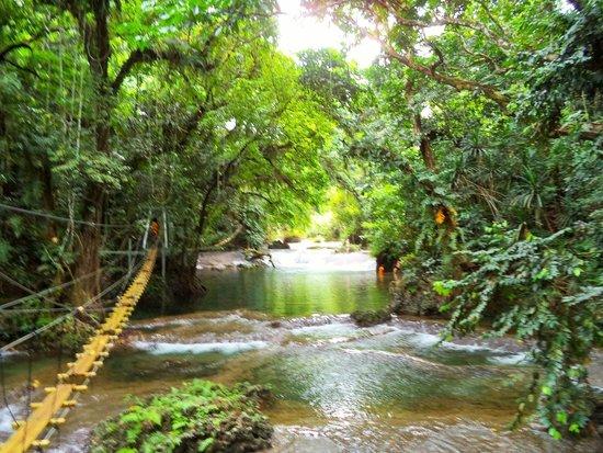 Eden on the River: bridges of eden