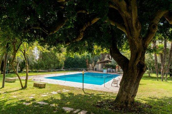 Mothuq Garden - House: Huge Pool