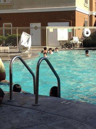 Homewood Suites by Hilton La Quinta: korean school group-also never left pool