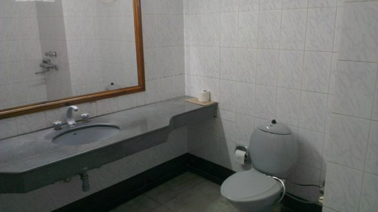 The Hamir (HPTDC): Bathroom view 2