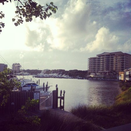 Louisiana Lagniappe: View from our table!
