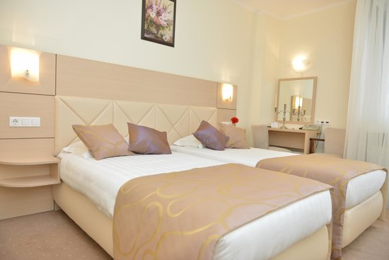 Hotel Coroana De Aur : Standard double room