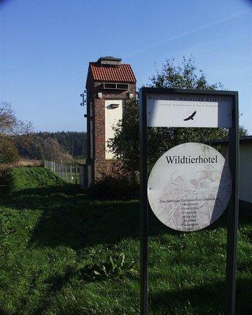 Wildtierland Gut Klepelshagen