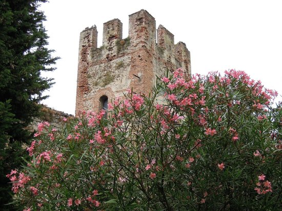 Mura di Lazise: Башня в цвету