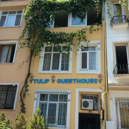 Tulip Guesthouse : Front of charming Tuilp Guesthouse