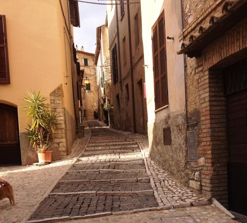 Johnny Madge Olive Oil Tour : A walk through Casperia